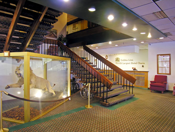 Best Western Golden Lion Hotel Anchorage Alaska Best Western Hotels In Anchorage Alaska Reservations Deals Discounts And More