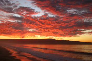 Mobil Home Rental Monterey